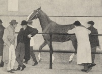Horse Dealers, 1919