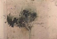 Study of a laurel bush, 1919